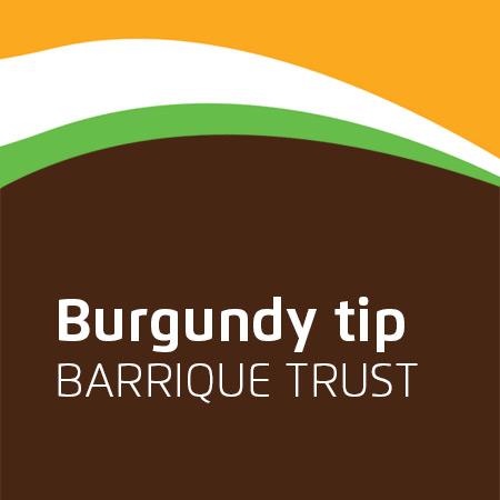 Burgundy tip barrique bačvi