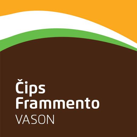 Framento čips