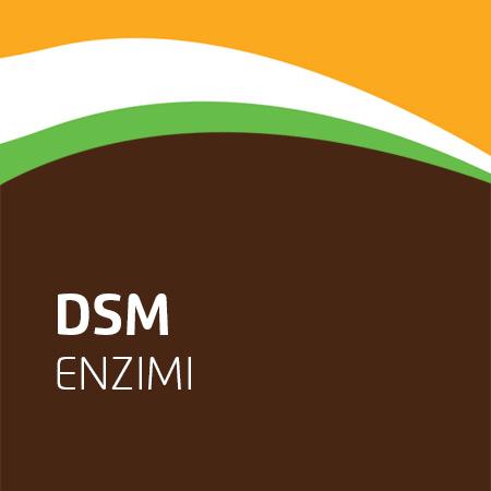DSM Oenobrands enzimi