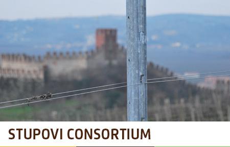 Stupovi za vinograd Consortium